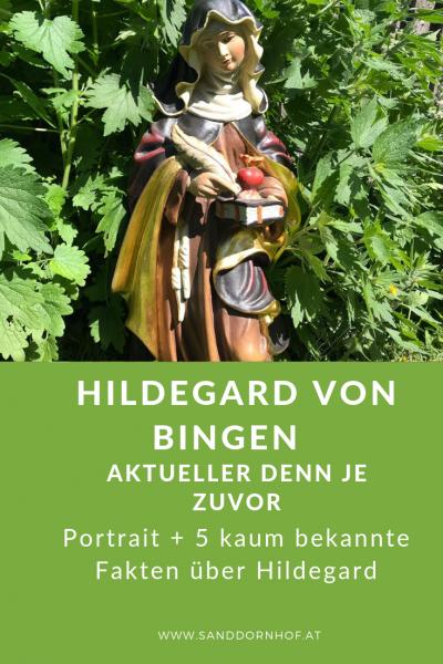 Hildegard Von Bingen Portrait1