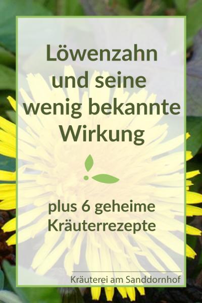 Loewenzahn Wirkung